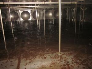 专业水池清洗